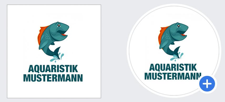 Facebook Seite erstellen - Logo der Firma hochladen