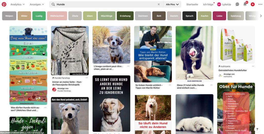 Pinterest ist auch für Blogger sehr interessant.